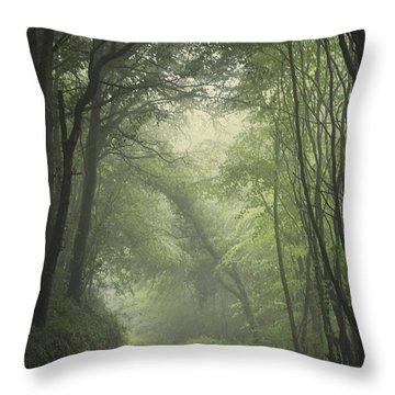 Mystery Awakens Throw Pillow
