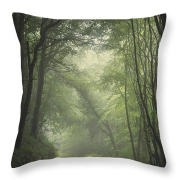 Ireland Photographs Throw Pillows