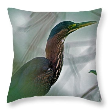 Mystery In The Marsh Throw Pillow by Inspired Nature Photography Fine Art Photography