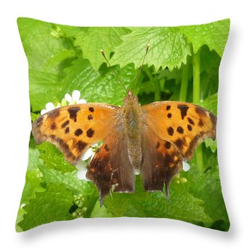 Throw Pillow featuring the photograph Mystery Lady by Lingfai Leung