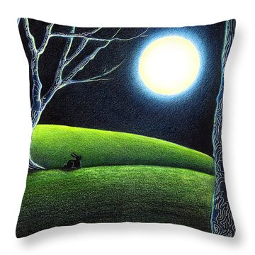 Mystery's Silence And Wonder's Patience Throw Pillow