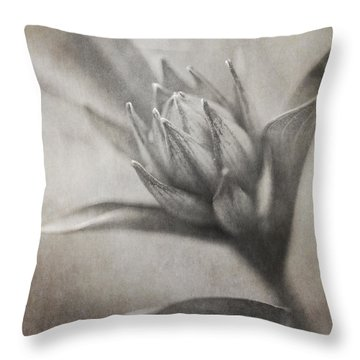 Mystic Anticipation Throw Pillow by Dale Kincaid