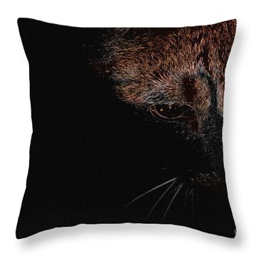 Mystic Cat Throw Pillow by Erica Hanel