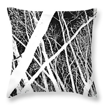Throw Pillow featuring the photograph Mystic Forest by Steven Milner