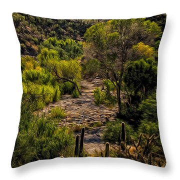 Mystic Wandering Throw Pillow by Mark Myhaver