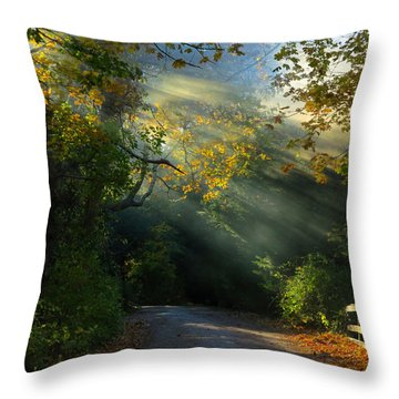 Mystical Throw Pillow by Dianne Cowen