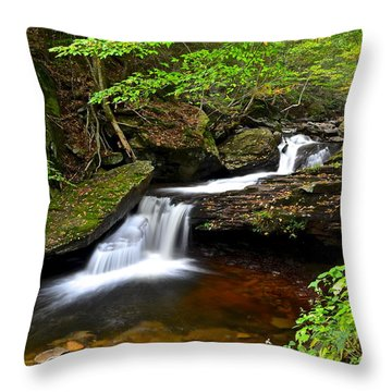 Mystical Magical Place Throw Pillow by Frozen in Time Fine Art Photography