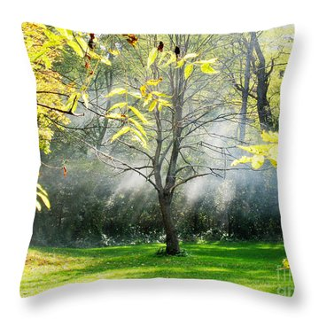 Throw Pillow featuring the photograph Mystical Parkland by Nina Silver