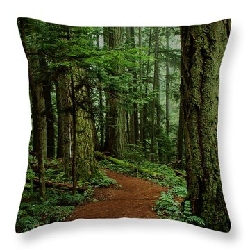 Mystical Path Throw Pillow