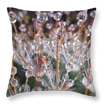 Mystical Photography Throw Pillow