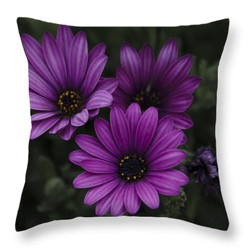 Mystical Purple Throw Pillow by Penny Lisowski