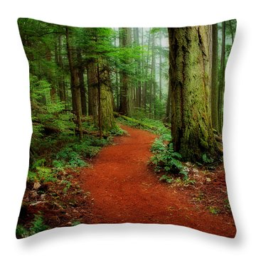 Mystical Trail Throw Pillow
