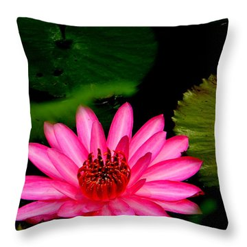 Mystical Water Lilly Throw Pillow