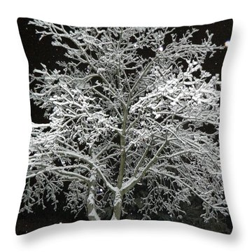 Mystical Winter Beauty Throw Pillow