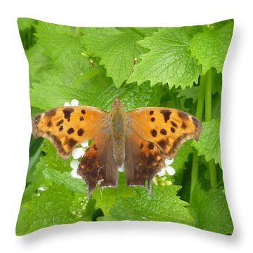 Throw Pillow featuring the photograph Mystique by Lingfai Leung