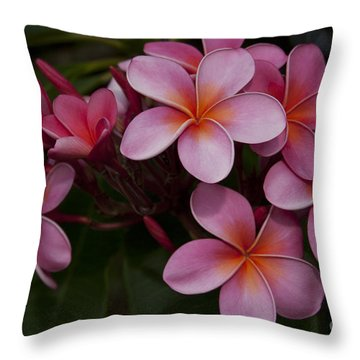 Na Lei Pua Melia O Wailua - Pink Tropical Plumeria Hawaii Throw Pillow