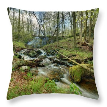 Naked Creek Falls Throw Pillow