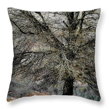 Naked For The Winter Throw Pillow