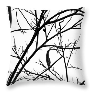 Naked Throw Pillow by Jim Rossol