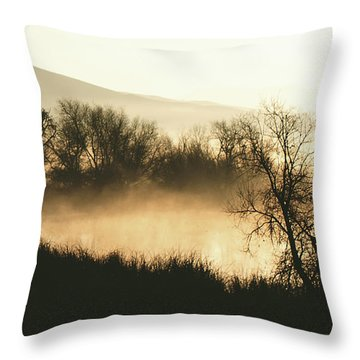Throw Pillow featuring the photograph Naked Trees 2 by Artist and Photographer Laura Wrede
