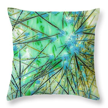 Nambe Cactus Throw Pillow by William Wyckoff