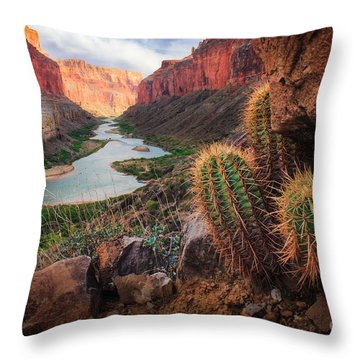 Nankoweap Cactus Throw Pillow by Inge Johnsson