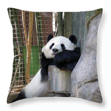 Nap Time Throw Pillow by Ausra Huntington nee Paulauskaite