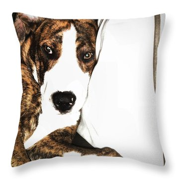 Throw Pillow featuring the photograph Nap Time by Robert McCubbin