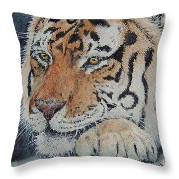 Nap Time. Sold Throw Pillow
