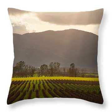 Napa Beauty Throw Pillow