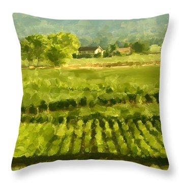 Napa Detail Throw Pillow by Paul Tagliamonte