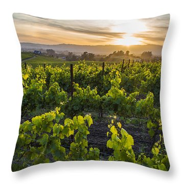 Napa Valley Sunset  Throw Pillow