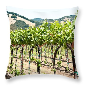 Throw Pillow featuring the photograph Napa Vineyard Grapes by Shane Kelly