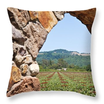 Throw Pillow featuring the photograph Napa Vineyard by Shane Kelly