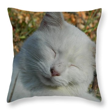 Throw Pillow featuring the photograph Napping Barn Cat by Kathy Barney