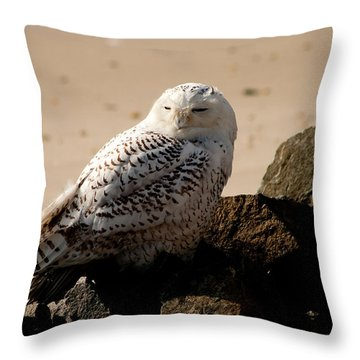 Napping On The Rocks Throw Pillow
