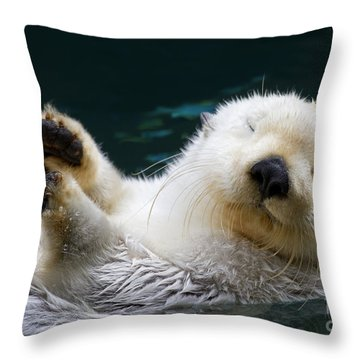 Napping On The Water Throw Pillow by Mike  Dawson