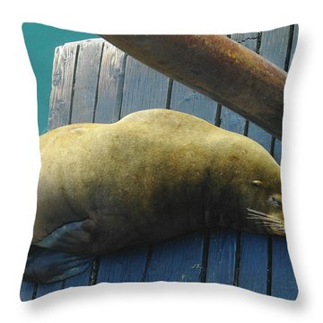 Napping Sea Lion Throw Pillow by Jeff Swan