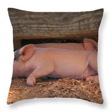 Naptime Throw Pillow by Kathleen Scanlan