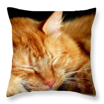 Naptime Throw Pillow