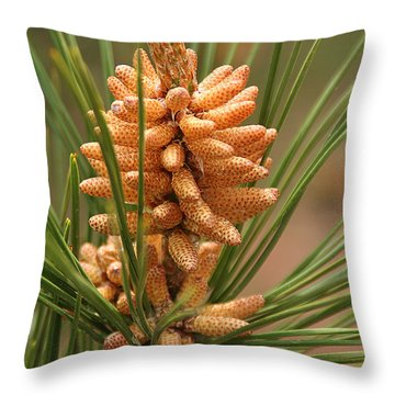 Nascent Pinecone Throw Pillow