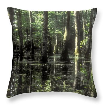 Natchez Trace Cypress Throw Pillow by Bob Phillips