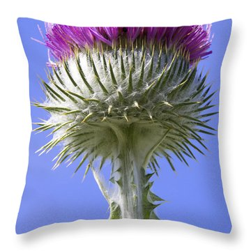 Throw Pillow featuring the photograph National Flower Of Scotland by Ross G Strachan