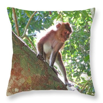 Native Palawan Monkey Throw Pillow