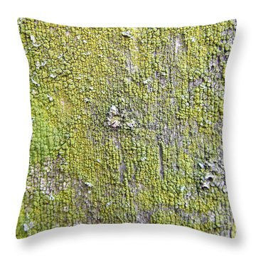 Natural Abstract 1 Old Fence With Moss Throw Pillow