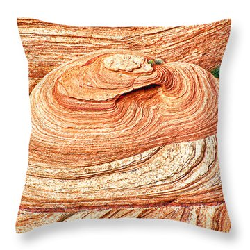 Natural Abstract Canyon De Chelly Throw Pillow by Bob and Nadine Johnston