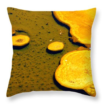 Natural Abstract Throw Pillow