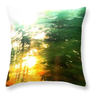 Throw Pillow featuring the photograph Natural Art by Rose Wang