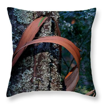 Throw Pillow featuring the photograph Natural Bands 1 by Evelyn Tambour
