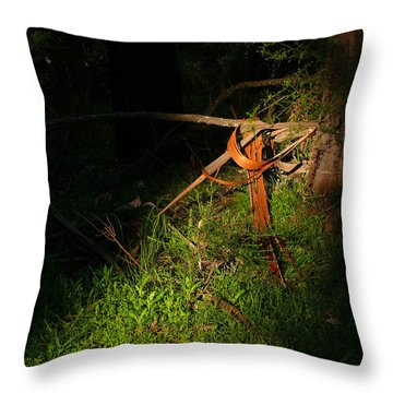 Throw Pillow featuring the photograph Natural Bands 2 by Evelyn Tambour